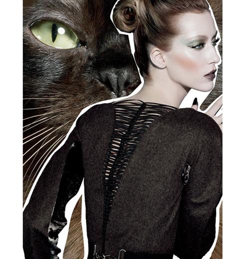http://www.leroseauxjoues.com/wp-content/uploads/2010/08/fabulous-feline-mac-12.jpg