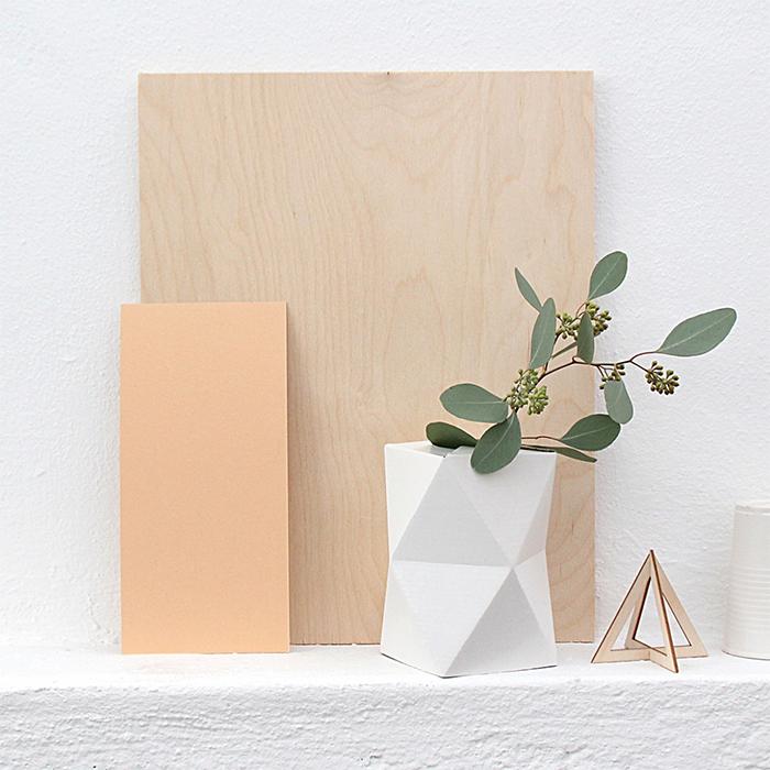 le rose aux joues d co mood des fleurs dans une ampoule. Black Bedroom Furniture Sets. Home Design Ideas